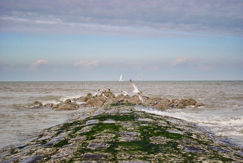 Vista bonita da costa de mar imagem de stock royalty free