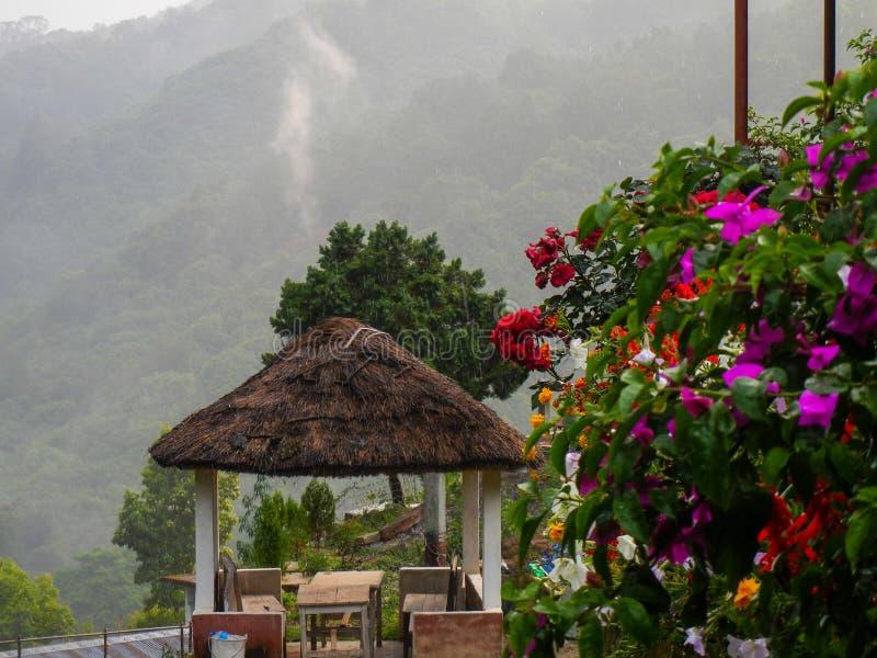 Vista bonita da floresta com flores e a cabana tradicional de descanso imagem de stock