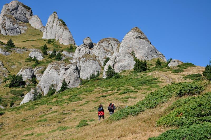 Vista bonita da montanha nos Carpathians imagem de stock royalty free