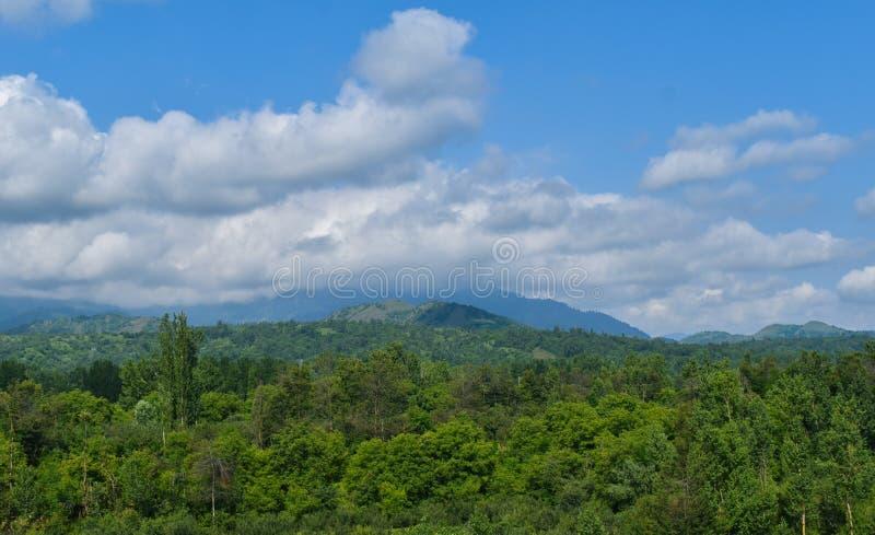 Vista bonita das florestas e do céu nebuloso na Índia de Kashmir Valley imagens de stock royalty free