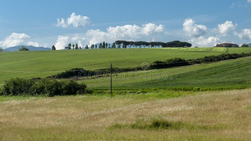 Vista bonita de campos e de prados verdes no por do sol em Toscânia fotografia de stock royalty free