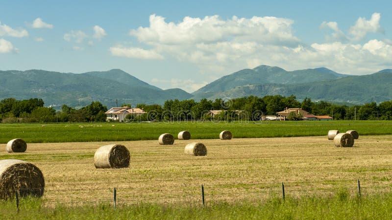 Vista bonita de campos e de prados verdes no por do sol em Toscânia imagem de stock