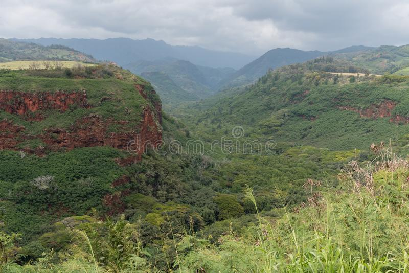 Vista bonita de Kauai - subúrbios da garganta de Waimea imagens de stock royalty free