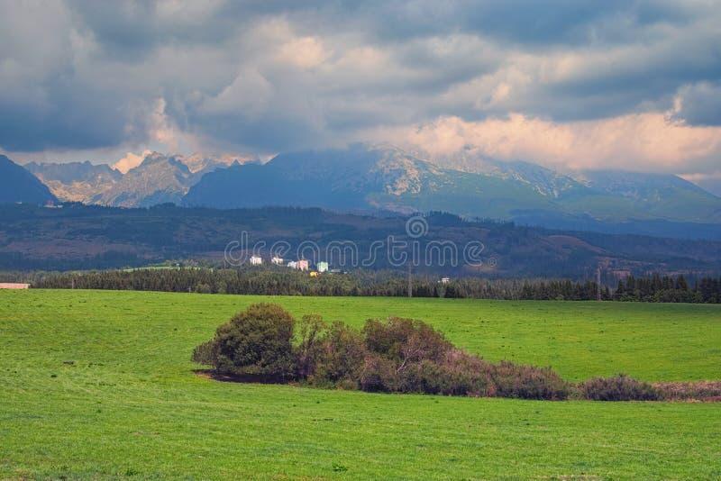 Vista bonita de picos de montanha e do prado verde na paisagem de montanhas de Tatra, Eslováquia do verão foto de stock royalty free