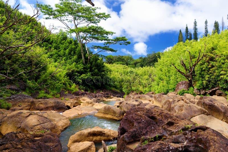Vista bonita de um córrego que flui entre rochas, situada ao longo da estrada famosa a Hana na ilha de Maui, Havaí fotografia de stock royalty free