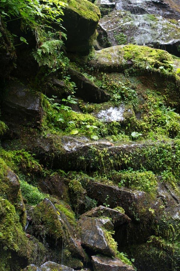 Vista bonita de uma cachoeira nas montanhas fotos de stock royalty free