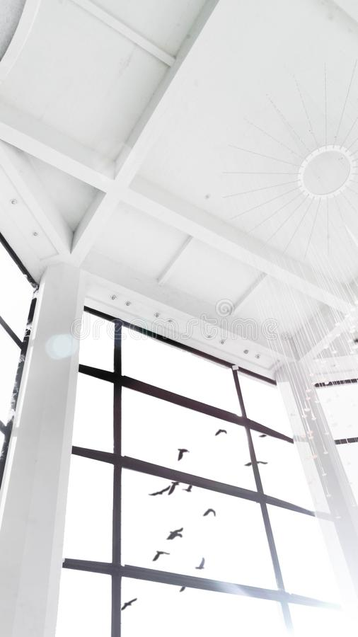 Vista bonita de uma grande janela de uma sala alta branca dos pássaros que voam no céu ilustração stock
