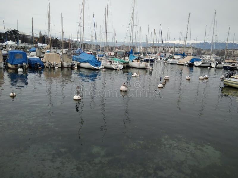 Vista bonita do lago de Genebra foto de stock royalty free