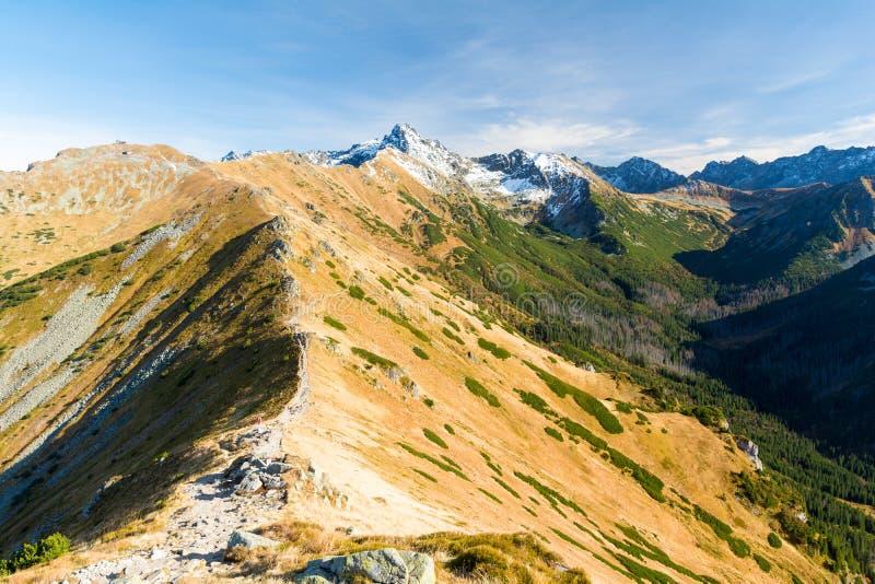 Vista bonita em montanhas de Tatra no outono no Polônia foto de stock