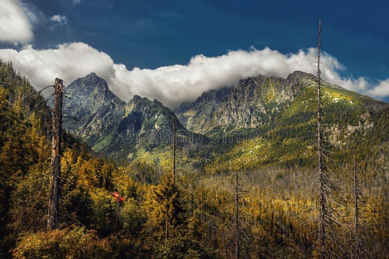 Vista bonita em montanhas no verão, tatras altos do parque nacional, slovakia fotografia de stock royalty free