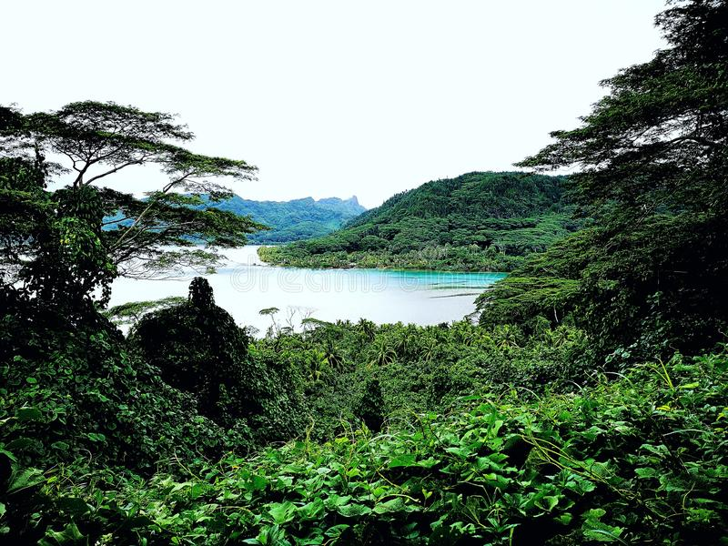 Vista bonita em Polinésia francesa fotografia de stock