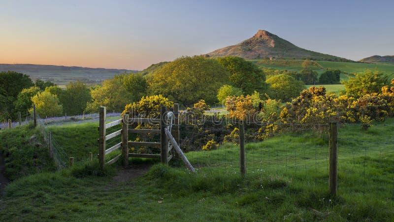 Vista bonita, incomum, maravilhosa a cobertura de Roseberry fotos de stock