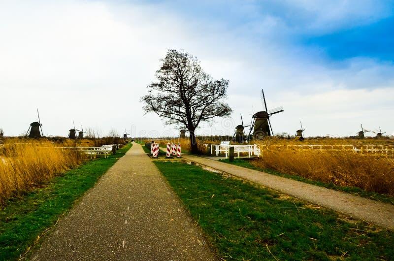 Vista bonita lindo romântica de moinhos de vento holandeses velhos no meio dos campos abertos claros imagens de stock royalty free