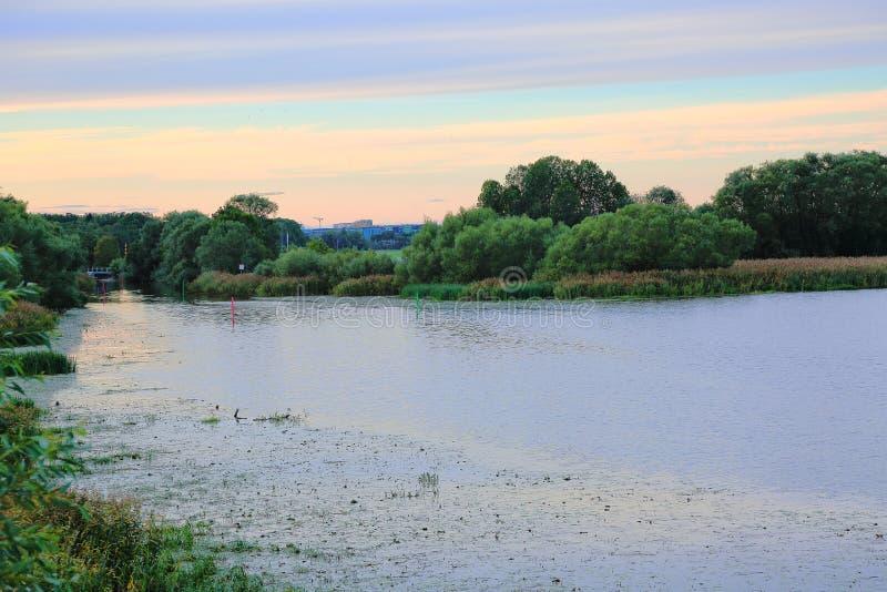 Vista bonita na cidade do lado do rio no por do sol Árvores e plantas verdes no fundo do céu azul imagens de stock