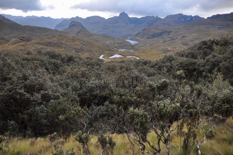 Vista bonita sobre o parque nacional do EL Cajas, Equador imagem de stock royalty free
