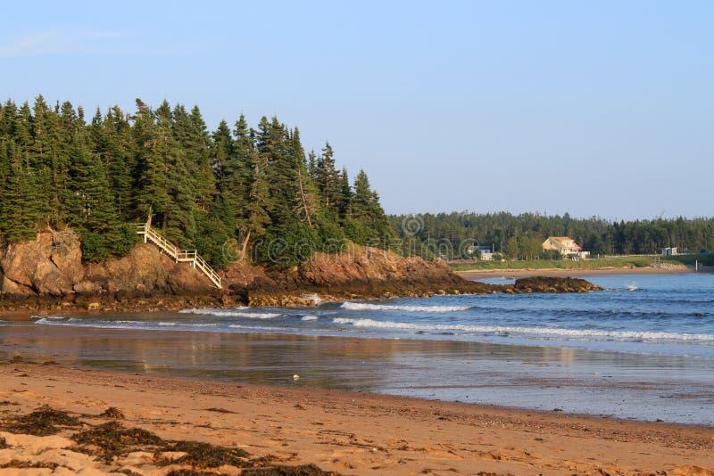 Vista cénico da praia nova do rio imagem de stock royalty free