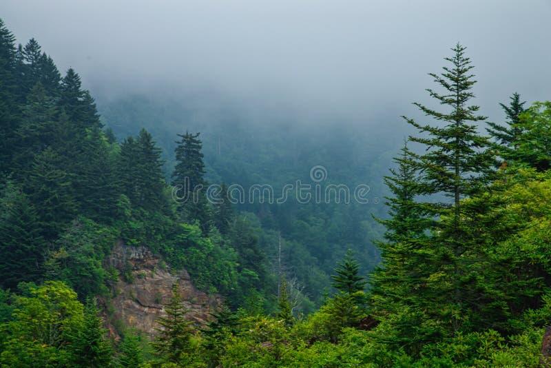 Vista Cênica, Pista de Cordilheira Azul imagens de stock royalty free