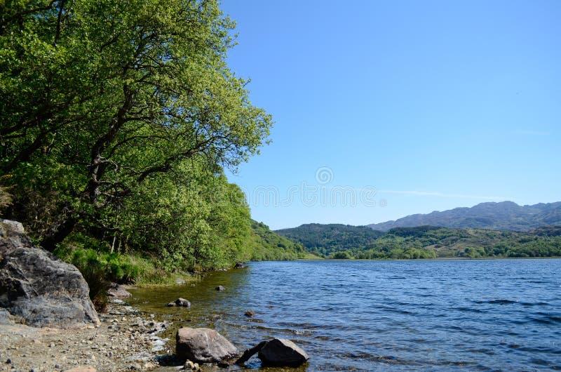 A vista cênico ao longo da árvore alinhou a costa de um lago imagens de stock