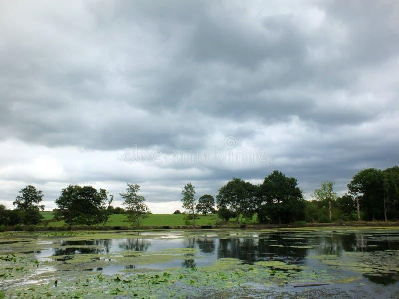 A vista cênico da costa de um lago calmo com o céu nebuloso cinzento e as árvores e grama cobriu montes ao longo do banco refleti imagem de stock