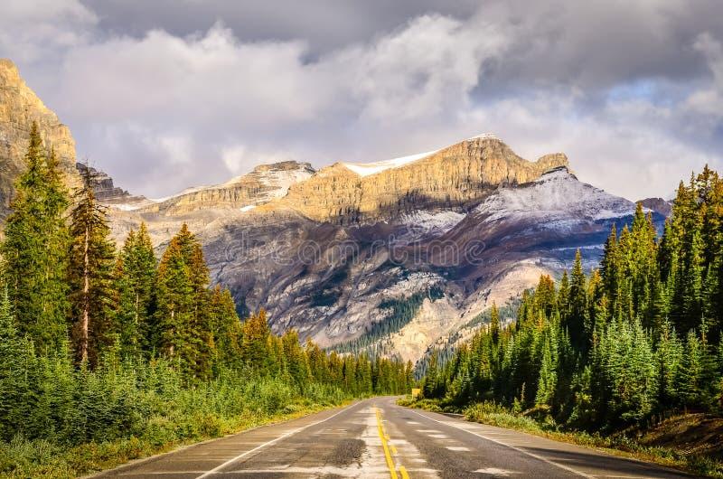 Vista cênico da estrada na via pública larga e urbanizada de Icefields, canadense Montanhas Rochosas fotografia de stock