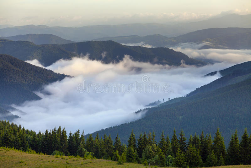 Vista cênico das florestas da montanha que cobrem pela névoa fotos de stock