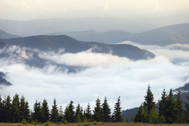 Vista cênico das florestas da montanha que cobrem pela névoa foto de stock