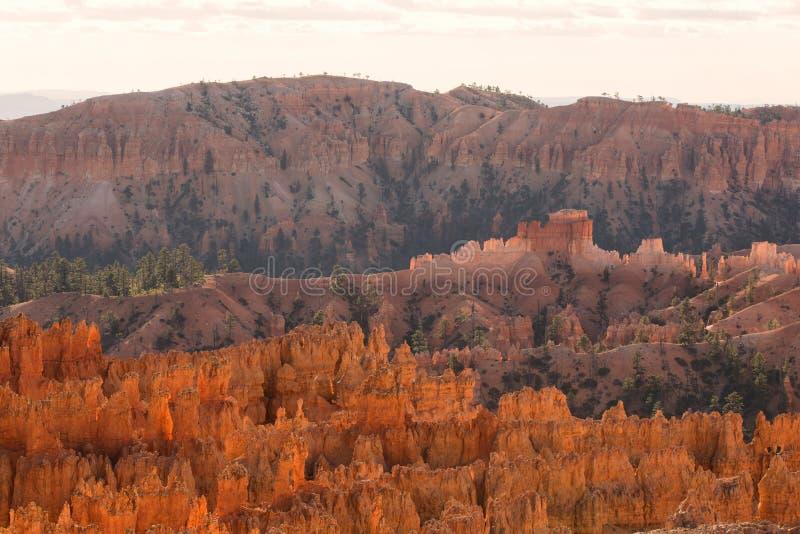 Vista cênico de azarentos do arenito vermelho em Bryce Canyon National Pa fotografia de stock