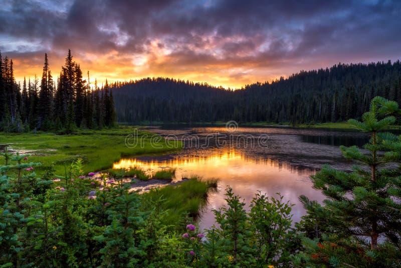 A vista cênico do Monte Rainier refletiu através do LAK da reflexão imagem de stock