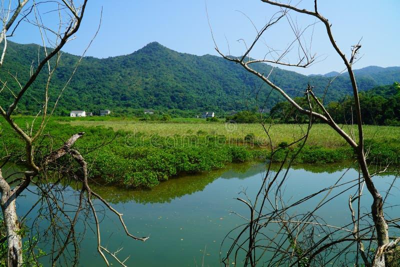 Vista cênico do riverbank imagens de stock royalty free