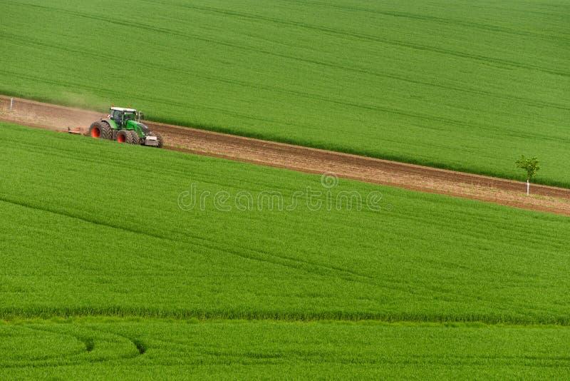 Vista cênico do trator de cultivo moderno que que ara o campo verde Trator da agricultura que cultiva o campo de trigo e que cria fotos de stock royalty free