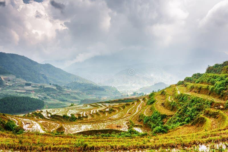 Vista cênico dos terraços do arroz do espelho enchidos com água vietnam imagens de stock