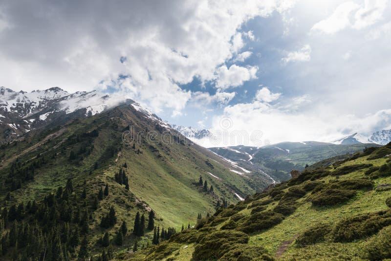 Vista cênico em montanhas majestosas verdes e em partes superiores nevado imagens de stock royalty free