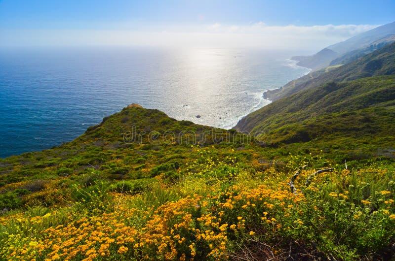 Vista cênico na rota 1 do estado de Califórnia foto de stock
