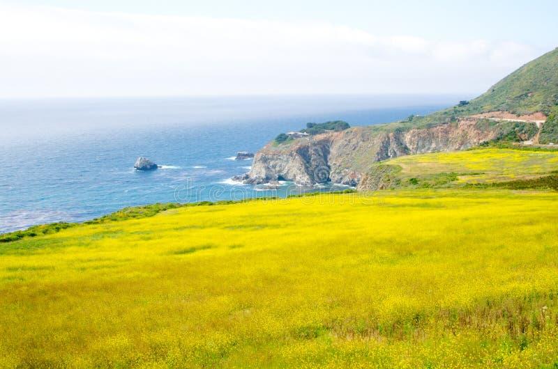 Vista cênico na rota 1 do estado de Califórnia fotos de stock royalty free