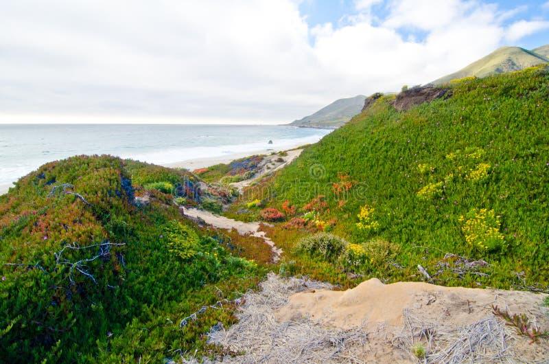 Vista cênico na rota 1 do estado de Califórnia imagens de stock