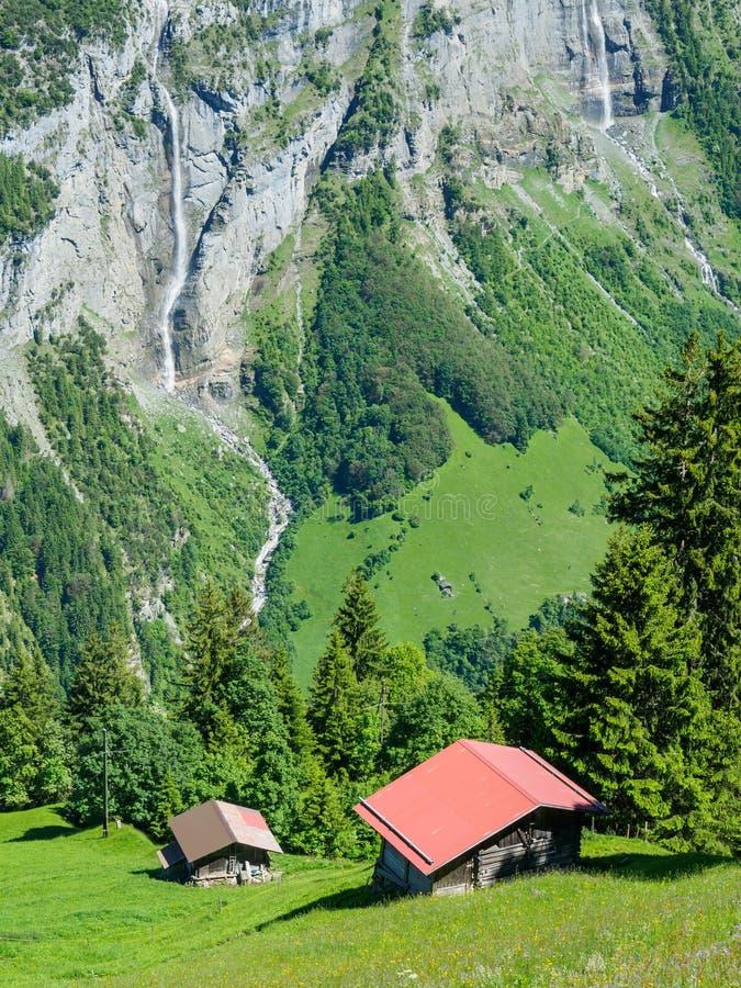 Vista cênico na rota trekking entre Murren e Gimmelwald, Swi imagem de stock