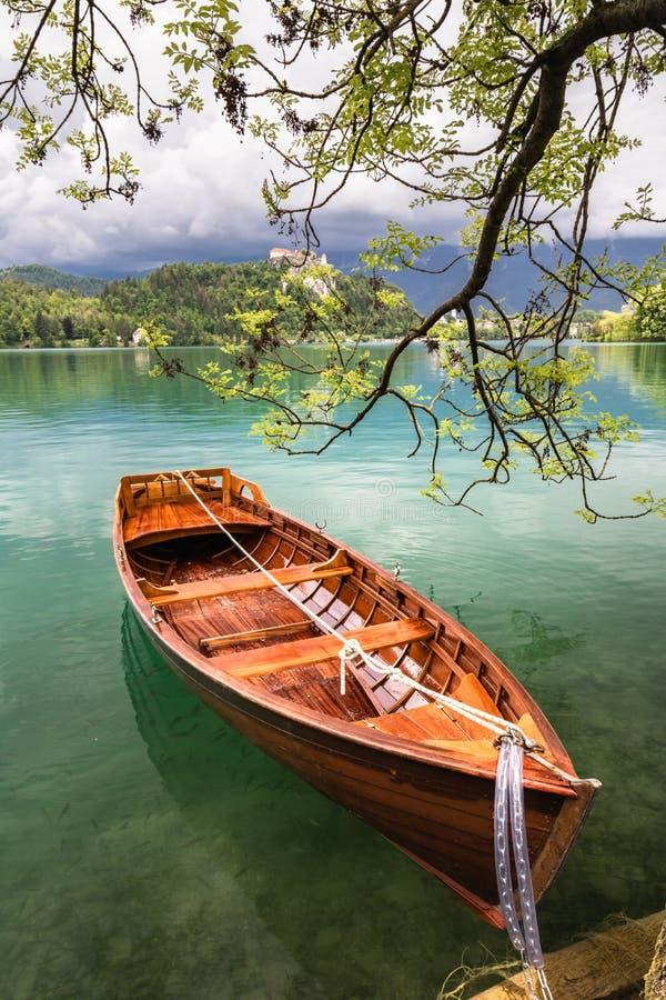 A vista cênico no barco de enfileiramento liso de madeira bonito no lago sangrado unido ao lado a uma árvore, slovenia, vai conce fotografia de stock
