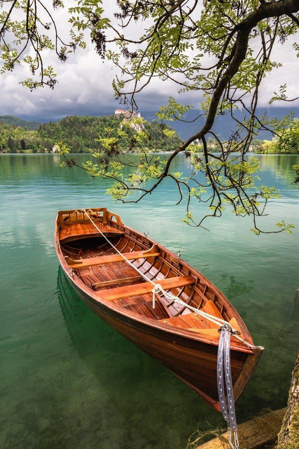 A vista cênico no barco de enfileiramento liso de madeira bonito no lago sangrado unido ao lado a uma árvore, slovenia, vai conce fotos de stock
