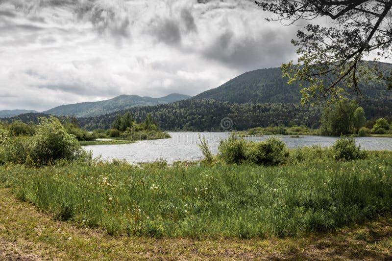 vista cênico no cerknica intermitente bonito do lago, com água, estação de mola, slovenia foto de stock royalty free