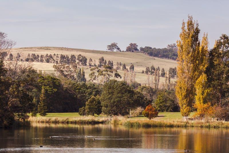 Vista calma de um lago no outono imagens de stock royalty free