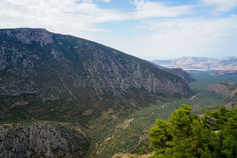 Vista circunvizinha fresca do vale da inclinação de montanha de Parnassus, bosques verde-oliva verdes através do mar Ionian com f imagens de stock royalty free