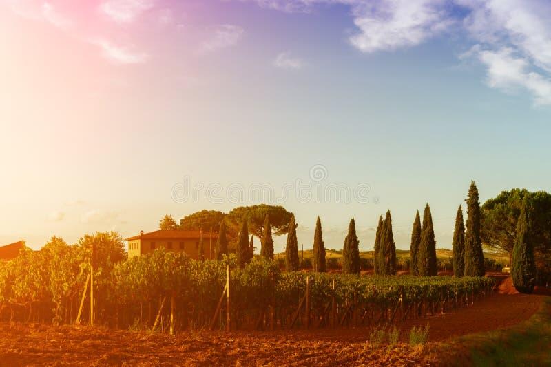 Vista clásica del paisaje escénico de Toscana imagen de archivo