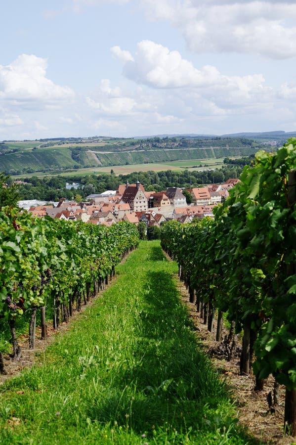 Vista com as fileiras dos recifes em uma vila medieval do vinho fotografia de stock