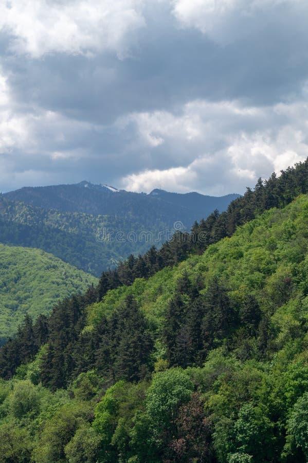 Vista con le montagne - massiccio di Postavarul - Brasov boscoso, Romania fotografie stock