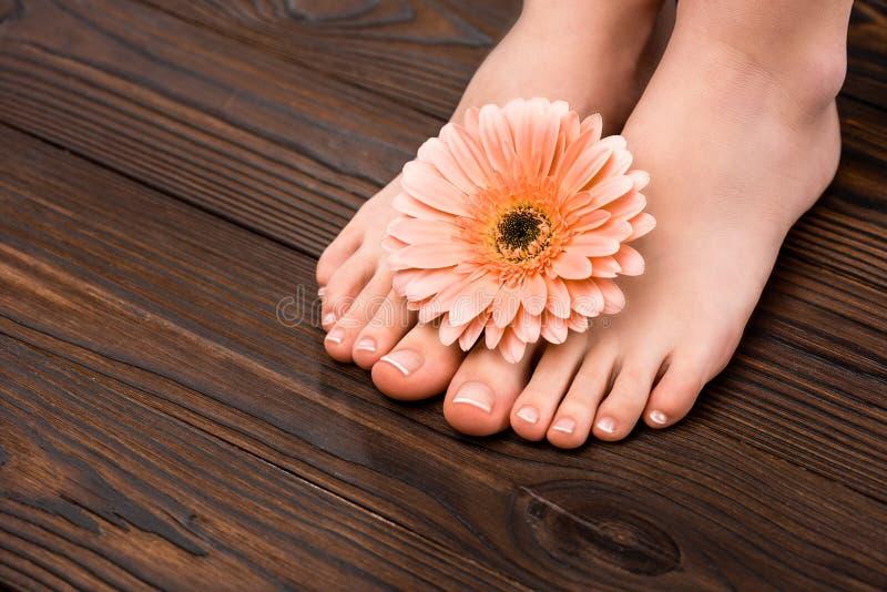 vista cosechada de pies con la flor natural de la pedicura y del gerbera fotografía de archivo libre de regalías