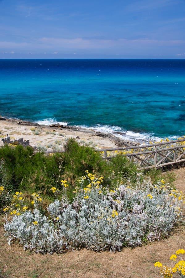 Vista costiera Mallorca/di Maiorca Cala Mesquida fotografia stock libera da diritti