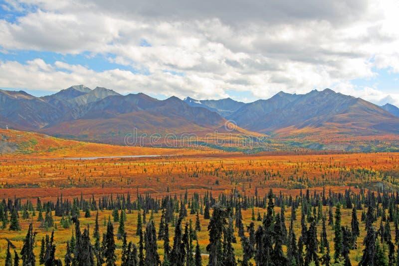 Vista d'Alasca fotografia stock libera da diritti