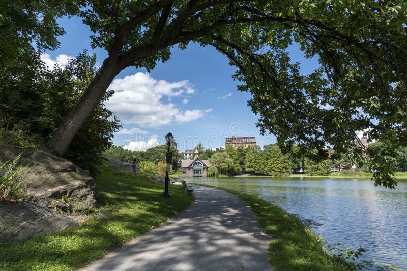 Vista d'inquadramento dell'albero dal Harlem Meer di Central Park in NYC fotografia stock libera da diritti