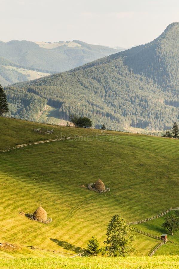 Vista da área de montanha ucraniana ocidental bonita no verão no sol fotografia de stock
