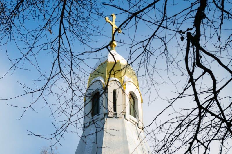 Vista da abóbada da capela do Kremlin de Ryazan através dos ramos das árvores imagens de stock